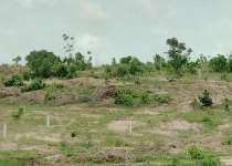 Affordable and litigation free land at kasoa Ojobi
